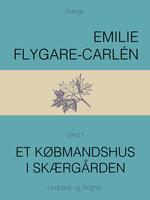 Et købmandshus i skærgården - Bind 1 - Emilie Flygare-Carlén