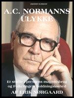 A.C. Normanns ulykke - Erik Nørgaard
