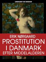 Prostitution i Danmark efter middelalderen - Erik Nørgaard