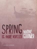 Spring og andre noveller - Nadine Gordimer
