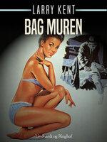 Bag muren - Larry Kent