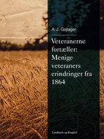 Veteranerne fortæller: Menige veteraners erindringer fra 1864 - A.J. Gejlager