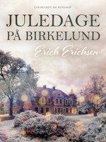 Juledage på Birkelund - Erich Erichsen