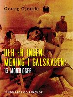 Der er ingen mening i galskaben: 13 monologer - Georg Gjedde