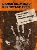 Oprør i Tugt-, Rasp- og Forbedringshuset - Diverse forfattere