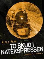 To skud i Natekspressen - Niels Meyn