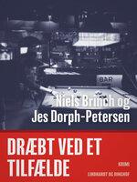 Dræbt ved et tilfælde - Jes Dorph-Petersen,Niels Brinch