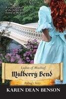 Mulberry Bend - Aisling's Story - Karen Dean Benson