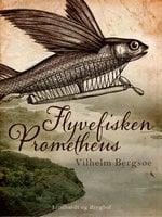 "Flyvefisken ""Prometheus"" - Vilhelm Bergsøe"