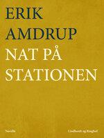Nat på stationen - Erik Amdrup