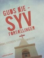 Guds øje - Syv fortællinger - Bodil Steensen-Leth