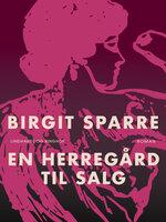 En herregård til salg - Birgit Sparre