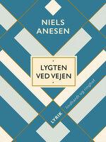 Lygten ved vejen - Niels Anesen
