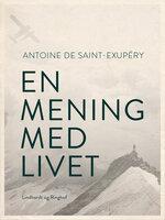 En mening med livet - Antoine de Saint-Exupéry
