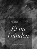 Et nu i vinden - André Brink
