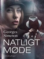 Natligt møde - Georges Simenon