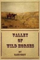 Valley of Wild Horses - Zane Grey