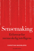 Sensemaking - Christian Madsbjerg