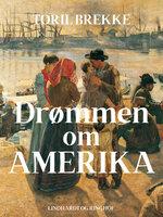 Drømmen om Amerika - Toril Brekke