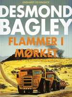 Flammer i mørket - Desmond Bagley