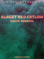 Slaget ved Catlow - David Robbins