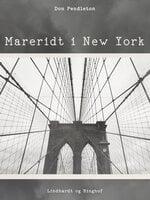 Mareridt i New York - Don Pendleton