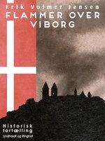 Flammer over Viborg - Erik Volmer Jensen