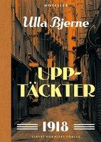 Upptäckter : Noveller - Ulla Bjerne