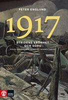 Stridens skönhet och sorg 1917 - Peter Englund