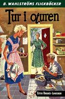Tur i oturen - Ester Ringnér-Lundgren