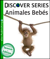 Animales Bebés - Xist Publishing