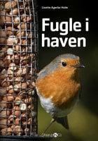Fugle i haven - Lisette Agerbo Holm
