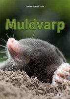 Muldvarp - Lisette Agerbo Holm