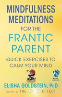Mindfulness Meditations for the Frantic Parent: The Now Effect - Elisha Goldstein