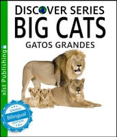 Big Cats / Gatos Grandes - Xist Publishing