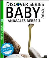 Baby Animals 3 / Animales Bebés 3 - Xist Publishing