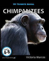 My Favorite Animal: Chimpanzees - Victoria Marcos