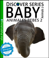 Baby Animals 2 / Animales Bebés 2 - Xist Publishing