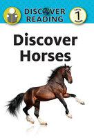 Discover Horses - Katrina Streza