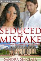 Seduced by Mistake - A Sensual Billionaire and Interracial BWWM Erotic Romance from Steam Books - Sandra Sinclair, Steam Books