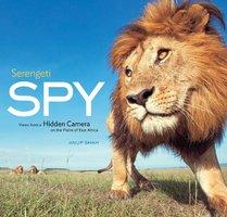 Serengeti Spy - Anup Shah