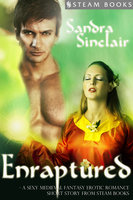 Enraptured - A Sexy Medieval Fantasy Erotic Romance Short Story from Steam Books - Sandra Sinclair,Steam Books