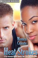 Heat Strokes - A Sexy Interracial BWWM Romance Short Story from Steam Books - Steam Books, Monica Celeste