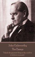 The Essays - John Galsworthy
