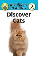 Discover Cats - Katrina Streza