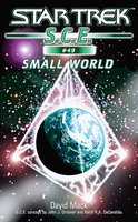 Star Trek: Small World - David Mack