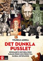 Det dunkla pusslet : spionagets historia - från faraos ögon och öron till global nätspaning - Wilhelm Agrell