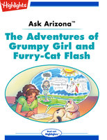 Ask Arizona: The Adventures of Grumpy Girl and Furry-Cat Flash - Lissa Rovetch