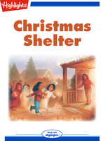 Christmas Shelter - Beth Thompson