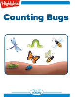 Counting Bugs - Charlotte Gunnufson